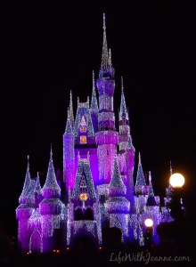 Cinderella's Castle {night photos}