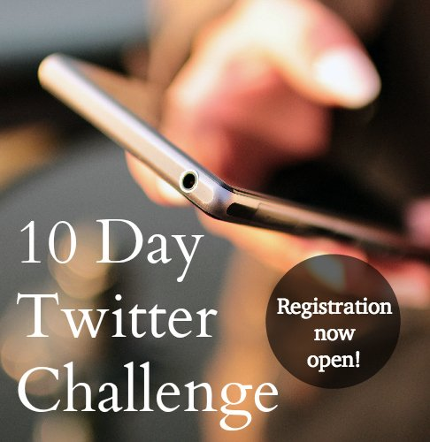 10 Day Twitter Challenge #bloggers #business