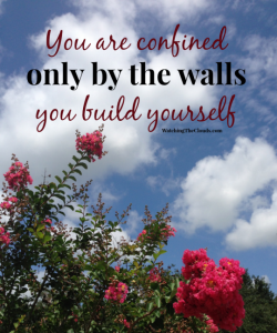 Free Yourself From The Walls You Create
