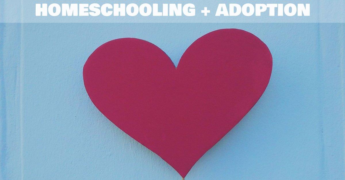 homeschooling after adoption