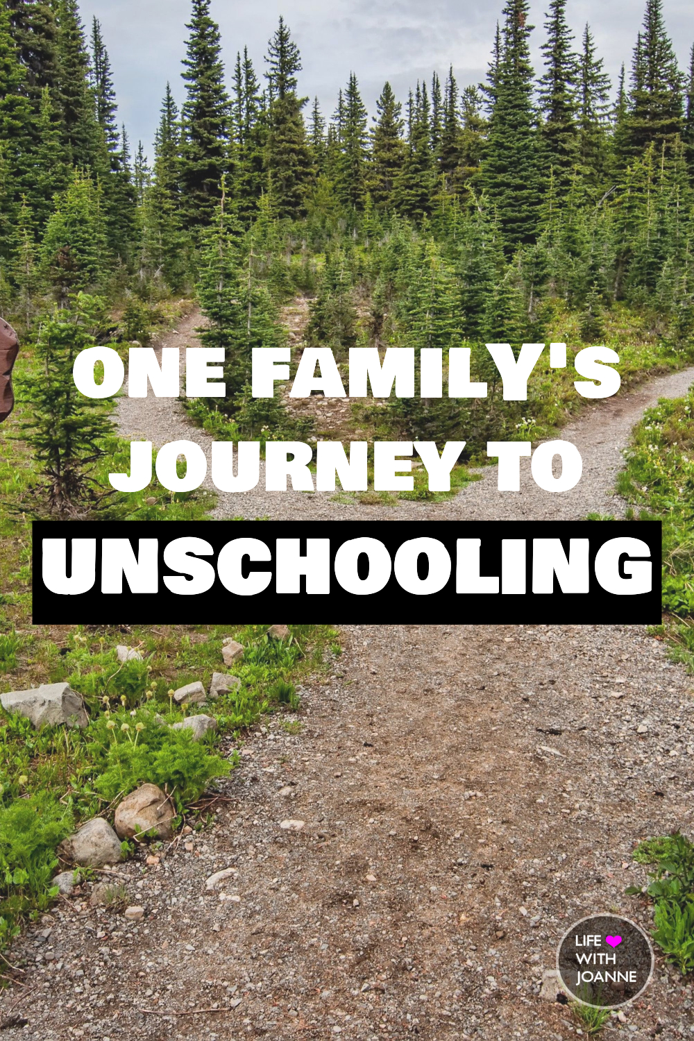 Journey to unschooling
