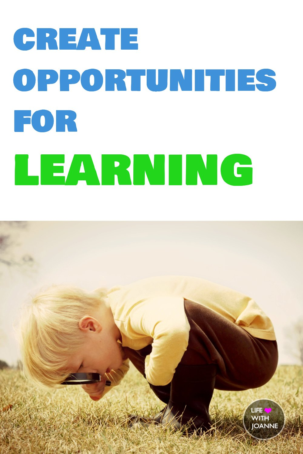 Create opportunities for learning